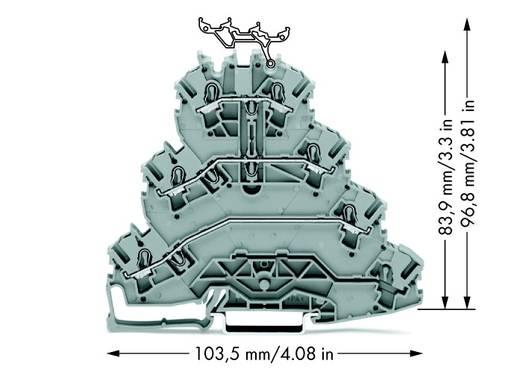 Doorgangsklem 4-etages 5.20 mm Veerklem Toewijzing: L1, L2, L3 Grijs WAGO 2002-4101 25 stuks