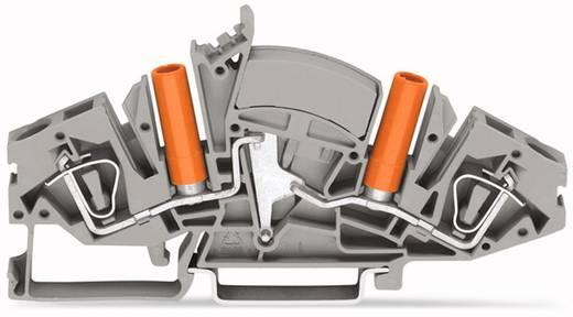 Doorgangsklem 8 mm Veerklem Toewijzing: L Grijs WAGO 282-841 20 stuks