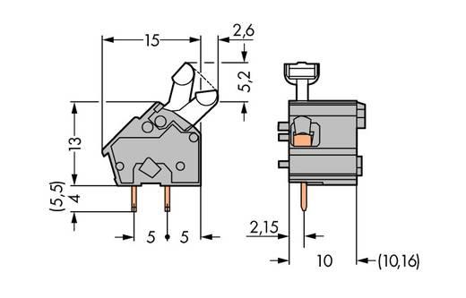 Veerkachtklemblok 2.50 mm² Aantal polen 1 WAGO Grijs 300 stuks