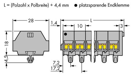 Klemstrook 10 mm Veerklem Toewijzing: L Grijs WAGO 261-254 50 stuks