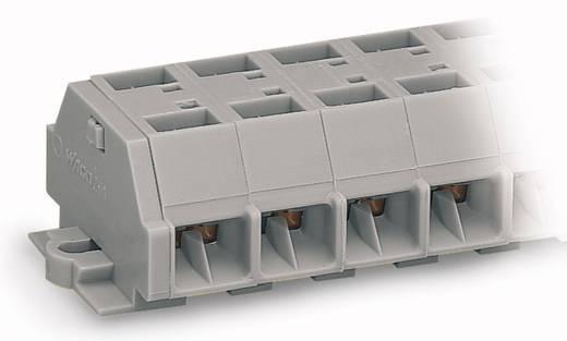 Klemstrook 10 mm Veerklem Toewijzing: L Grijs WAGO 261-209 25 stuks