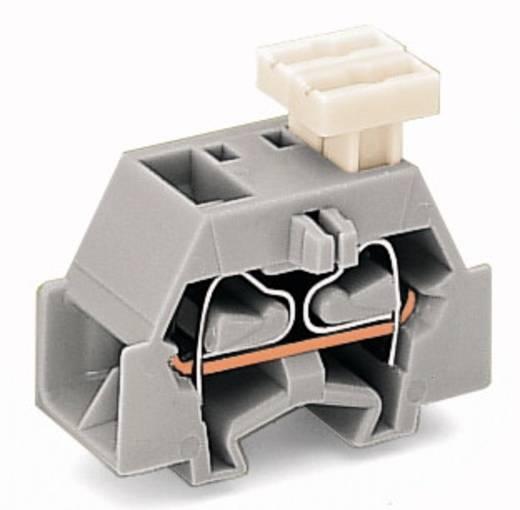 Aderklem 10 mm Veerklem Toewijzing: L Grijs WAGO 261-341/332-000 200 stuks