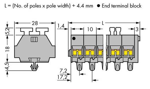 Klemstrook 10 mm Veerklem Toewijzing: L Grijs WAGO 261-257/342-000 50 stuks