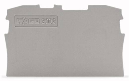 WAGO 2002-1291 Afsluit- en tussenplaat 100 stuks