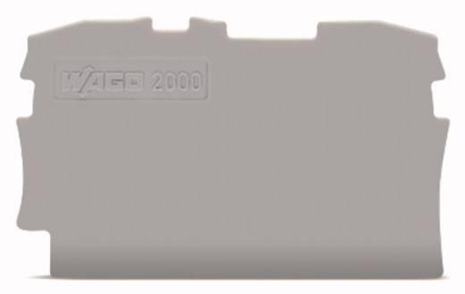 WAGO 2000-1291 Afsluit- en tussenplaat 100 stuks