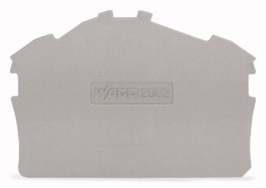 WAGO 2002-6391 Afsluit- en tussenplaat 100 stuks