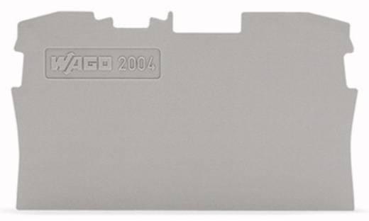 WAGO 2004-1291 Afsluit- en tussenplaat 100 stuks