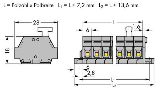 Klemstrook 6 mm Veerklem Toewijzing: L Grijs WAGO 261-424/331-000 50 stuks