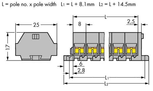 Klemstrook 8 mm Veerklem Toewijzing: L Grijs WAGO 260-205 50 stuks