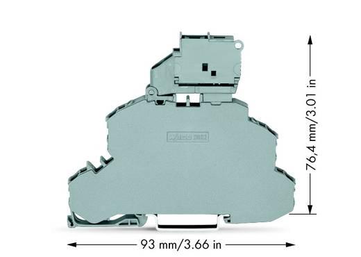 Zekeringsklem 2-etages 6.20 mm Veerklem Toewijzing: L, L Grijs WAGO 2002-2611 25 stuks