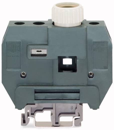 Zekeringsklem 24 mm Schroeven Grijs WAGO 400-416/416-299 10 stuks