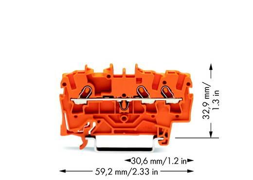 Doorgangsklem 4.20 mm Veerklem Oranje WAGO 2001-1302 100 stuks