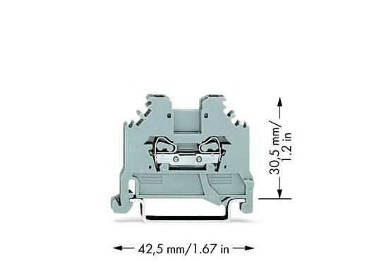 Doorgangsklem 4 mm Veerklem Toewijzing: L Grijs WAGO 279-101 100 stuks