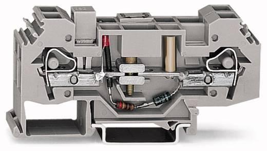 Scheidingsklem 16 mm Veerklem Toewijzing: L Grijs WAGO 282-141 12 stuks