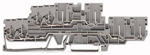 Basisklem 5 mm Veerklem Toewijzing: L, L Grijs WAGO 870-131 40 stuks