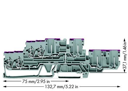 Doorgangsklem 2-etages 5 mm Veerklem Toewijzing: L Grijs WAGO 870-138 40 stuks