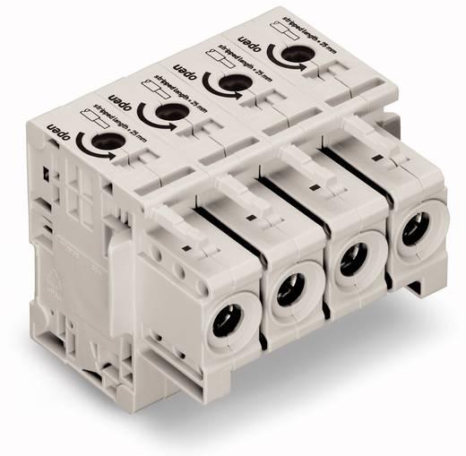WAGO 834-1104 Busbehuizing-kabel 834 Totaal aantal polen 4 Rastermaat: 17.50 mm 5 stuks