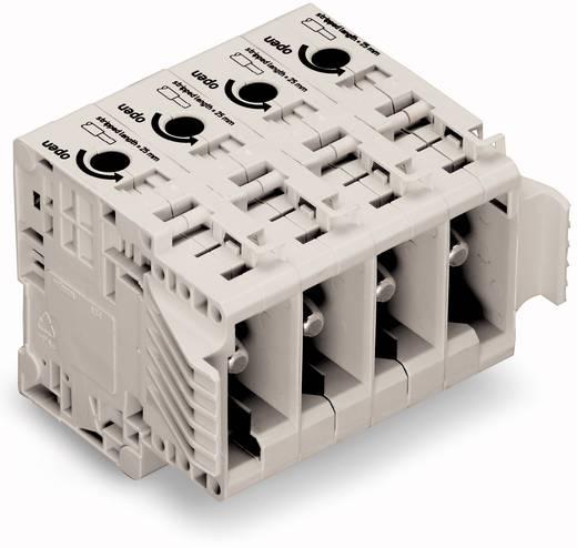 Busbehuizing-kabel 834 Totaal aantal polen 3 WAGO 834-1203 Rastermaat: 17.50 mm 5 stuks