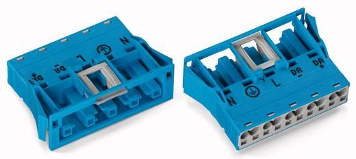 Netstekker Serie (connectoren) WINSTA MIDI Bus, recht Totaal aantal polen: 5 25 A Blauw WAGO 100 stuks