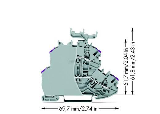 Doorgangsklem 2-etages 4.20 mm Veerklem Toewijzing: L Grijs WAGO 2000-2238/099-000 50 stuks