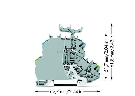 Doorgangsklem 2-etages 4.20 mm Veerklem Toewijzing: L Grijs WAGO 2000-2247/099-000 50 stuks