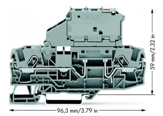 Zekeringsklem 7.50 mm Veerklem Grijs WAGO 2006-1611/1000-541 25 stuks