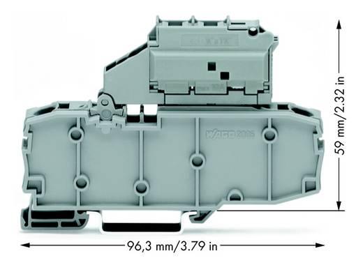 Zekeringsklem 7.50 mm Veerklem Grijs WAGO 2006-1631/099-000 25 stuks