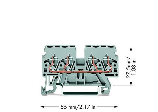 Doorgangsklem 5 mm Veerklem Toewijzing: L Grijs WAGO 870-831 100 stuks