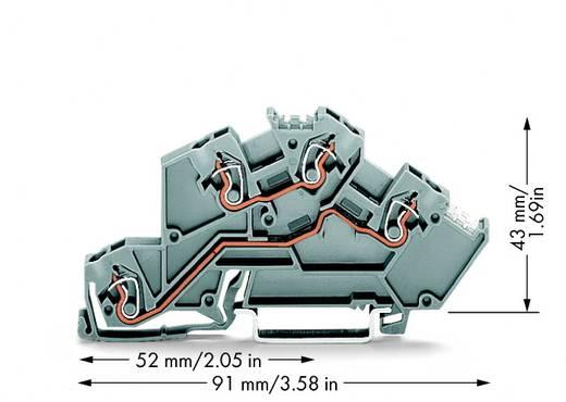 Installatie-etageklem 5 mm Veerklem Toewijzing: L, L Grijs WAGO 775-642 50 stuks