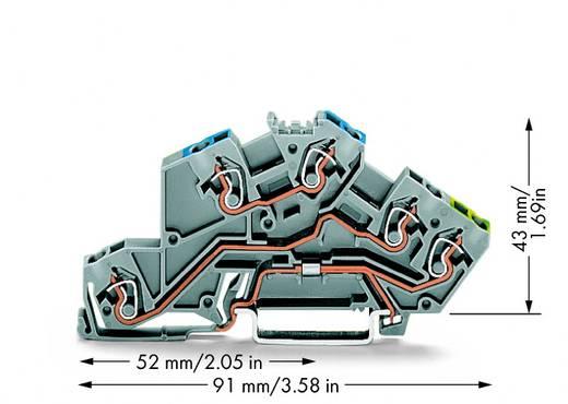 Installatie-etageklem 5 mm Veerklem Toewijzing: N, L, Terre Grijs WAGO 775-646 50 stuks