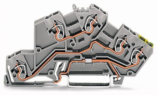 Installatie-etageklem 5 mm Veerklem Toewijzing: L, L, Terre Grijs WAGO 775-645 50 stuks