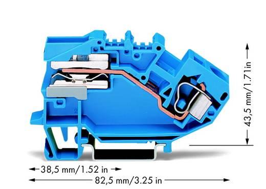 Scheidingsklem 10 mm Veerklem Toewijzing: N Blauw WAGO 784-613 25 stuks