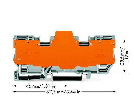 Basisklemblok 5 mm Veerklem Toewijzing: L Grijs WAGO 769-162/769-313 10 stuks