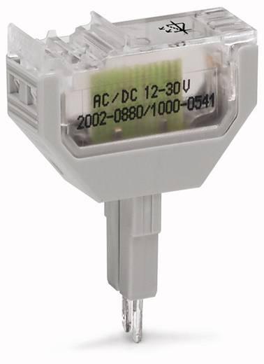 WAGO 2002-880/1000-836 2002-880/1000-836 LED-bouwsteen 50 stuks