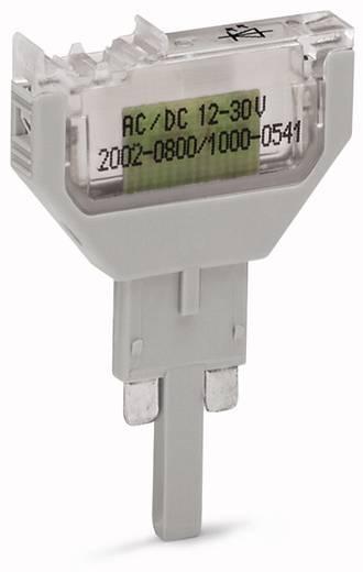 WAGO 2002-800/1000-836 2002-800/1000-836 LED-bouwsteen 100 stuks