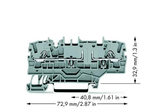 Basisklem 5.20 mm Veerklem Toewijzing: L Grijs WAGO 2002-1961 50 stuks