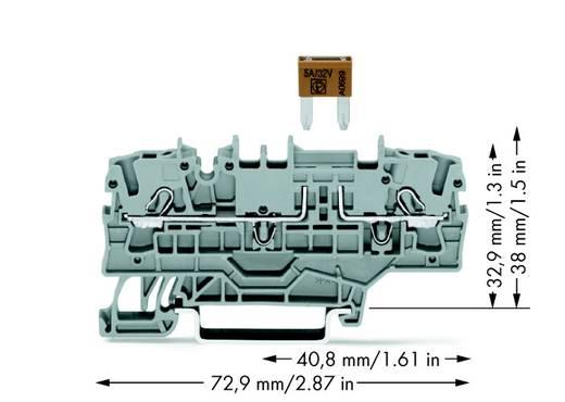 Zekeringsklem 5.20 mm Veerklem Grijs WAGO 2002-1981 50 stuks