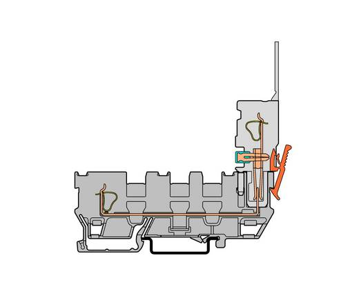 Basisklem 5 mm Veerklem Toewijzing: L Grijs WAGO 769-214 50 stuks