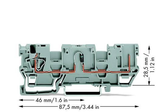 Diodeklem 5 mm Veerklem Grijs WAGO 769-218/281-411 50 stuks
