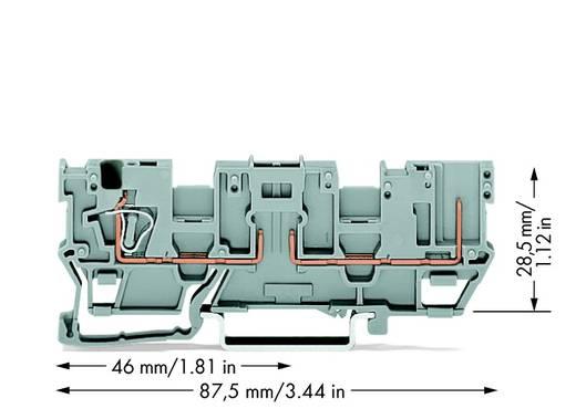 Basisklem 5 mm Veerklem Toewijzing: L Grijs WAGO 769-181 50 stuks