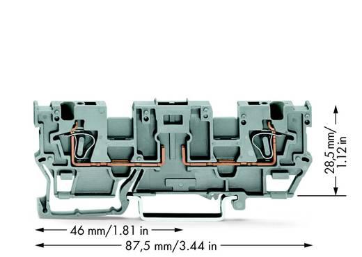 Basisklem 5 mm Veerklem Toewijzing: L Grijs WAGO 769-191 50 stuks