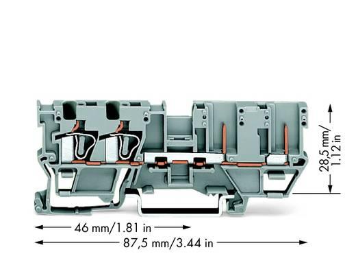 Basisklem 5 mm Veerklem Toewijzing: L Grijs WAGO 769-171 50 stuks