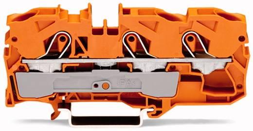 Doorgangsklem 10 mm Veerklem Oranje WAGO 2010-1302 25 stuks