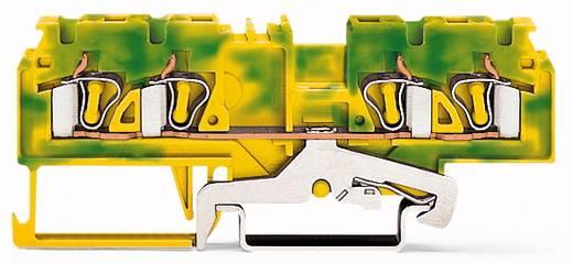 Aardingsklem 5 mm Veerklem Toewijzing: Terre Groen-geel WAGO 880-837/999-940 50 stuks