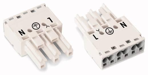 Netstekker Serie (connectoren) WINSTA MIDI Bus, recht Totaal aantal polen: 3 25 A Wit WAGO 100 stuks
