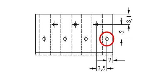 Veerkachtklemblok 1.50 mm² Aantal polen 14 WAGO Grijs 100 stuks