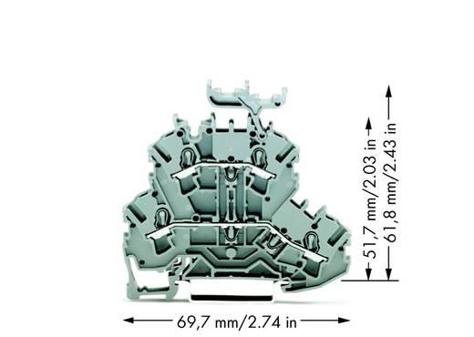 Doorgangsklem 2-etages 5.20 mm Veerklem Toewijzing: L, L Grijs WAGO 2002-2231 50 stuks