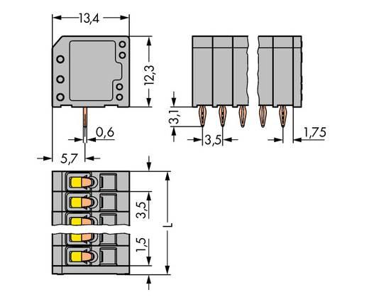 Veerkachtklemblok 1.50 mm² Aantal polen 4 739-304 / 100-000 WAGO Grijs 300 stuks