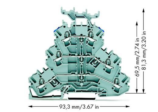 Doorgangsklem 3-etages 5.20 mm Veerklem Toewijzing: L, L, N Grijs WAGO 2002-3233 50 stuks