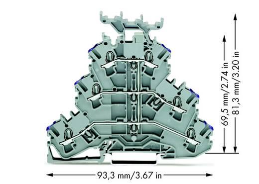 Doorgangsklem 3-etages 5.20 mm Veerklem Toewijzing: L Grijs WAGO 2002-3238 50 stuks
